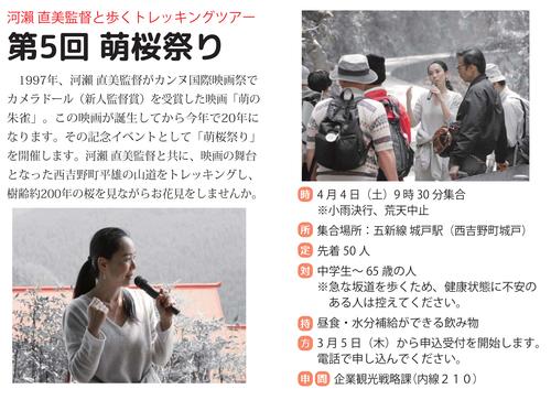 萌桜祭り.jpg