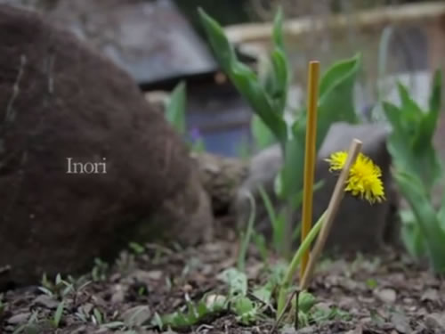 INORI (2012)(Docufiction)